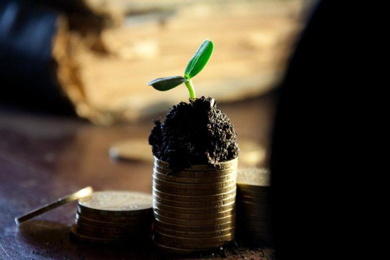 Wskazówki dla kupujących nieruchomości